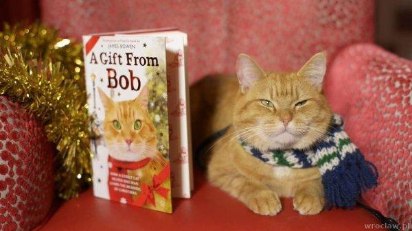 Когда выйдет  Подарок от кота Боба